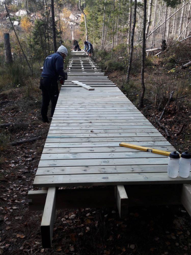 GIF-joggen vedlikeholder deler av løypenettet i Gressvikmarka. Her er en dugnadsgjeng i gang med bygging av en klopp.